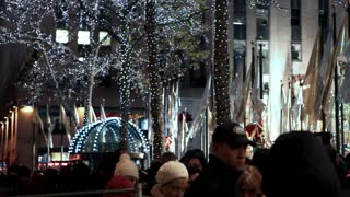 Crowd Gathered Under Trees with Christmas Lights 4