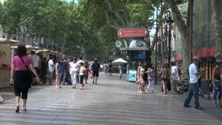Crowd of People Under Tree Canopy in Barcelona Spain 4