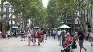 Crowd of People Under Tree Canopy in Barcelona Spain