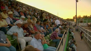 Crowd Watches Draft Horse Competition