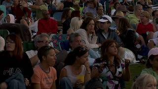 Crowd Watches Outdoor Concert