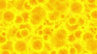 Dandelion blossoms background loop animation