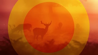 Deer Motion Background. Great For Summer And Fall