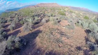 Desert landscape aerial flyover close to ground