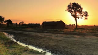 Dirt Road and Homes at Sunset