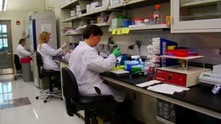 Dolly Shot Of Scientists At Work In Laboratory