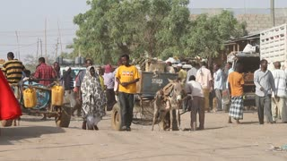 Donkey Carts And Pedestrians On Busy Ethiopian Street