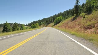 Driving Along Evergreen Forest Roadway