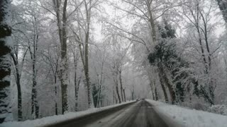 Driving into the snowy street