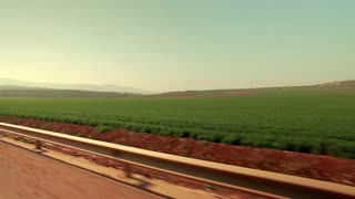 Driving Past Strip of Greenery and Red Field 10