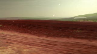 Driving Past Strip of Greenery and Red Field 4