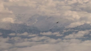 Eagle Soaring Through Sky Over Snow Covered Landscape and Water