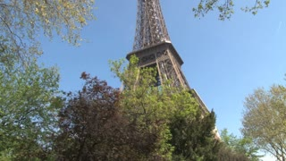 Eiffel Tower Coming out of Trees