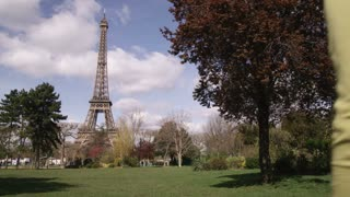 Eiffel Tower with Silhouette of Tree 2