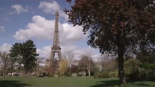 Eiffel Tower with Silhouette of Tree