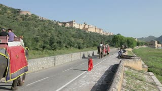 Elephants taking tourists to Amber Fort near Jaipur, Rajasthan, India, Asia