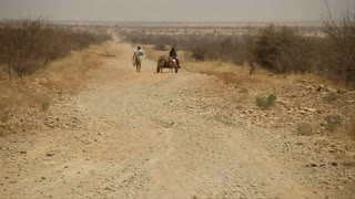 Endless Dirt Road With Donkey Cart In Desert