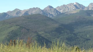 Evergreen Forested Mountain With Larger Mountian In Background