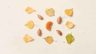 Fall. Autumn composition with leaves, nuts and mandarin.