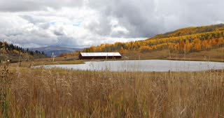 Fall foliage on a farm in Autumn in Steamboat Springs, Colorado wide shot