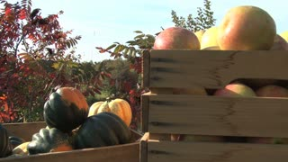 Fall Fruits and Veggies by the Water 8