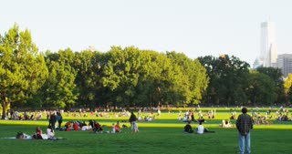 Families Relaxing in Central Park in the Evening