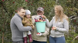Family out collecting apples in the orchard with a young mother and father and their infant son accompanied by the grandfather who is holding a bucket of freshly picked apples