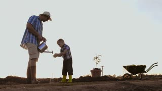 Father washing sons hands while planting a tree. Sunrise. Silhouette. Spring.
