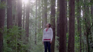 Female Hiker Admiring Redwood Trees