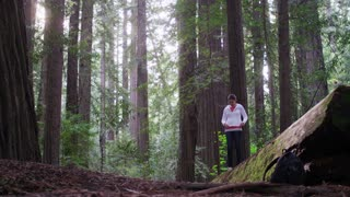 Female Hiker Looks Up at Redwood Trees