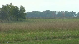 Field of Picketts Charge