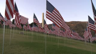 Field of Waving Flags