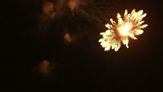 Fireworks Exploding in the Night Sky 12
