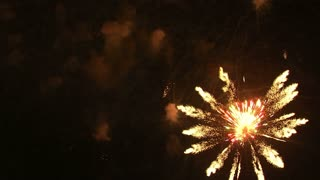 Fireworks Exploding in the Night Sky 13