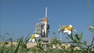 Flowers in the Grass with Space Shuttle in the Background