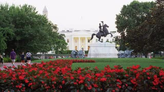 Flowers In White House Grounds