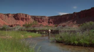 Fly Fisherman Fishing In Southern Utah
