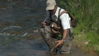 Fly Fisherman Releases Trout Into River