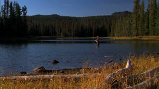 Fly Fishing In National Park Lake