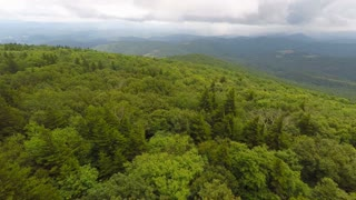 Flying forward right over trees in Appalachian Mountains