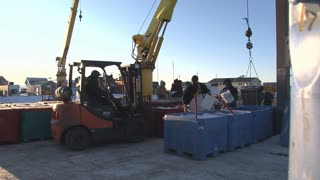 Forklift Takes Crate Of Fish