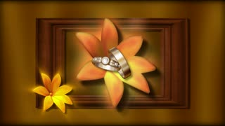 Framed Flower and Rings