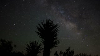 Galaxy Over Joshua Tree Timelapse
