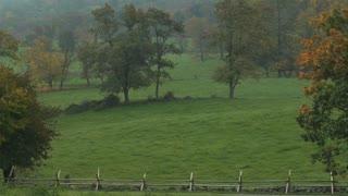 Gettysburg Battlefield Foggy Morning