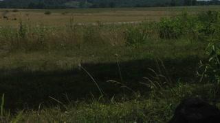 Gettysburg Battlefield The Roundtops