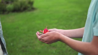 Girl Receiving Red Flower As Love Gift