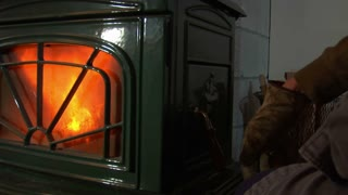 Gloved Hands Add  Wood To Woodstove Of