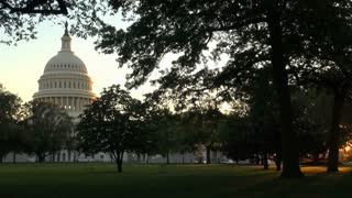 Gorgeous View of Capitol Building Through Trees
