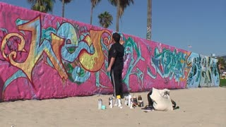 Graffiti Artist Paints Beach Mural