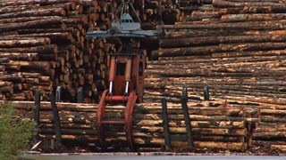 Grapple Lifting Logs at Logging Mill